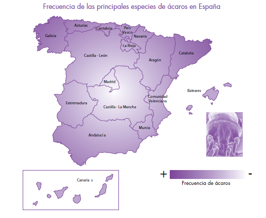 Estudio epidemiológico de pacientes alérgicos en España