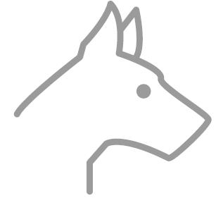 Icono animales domésticos